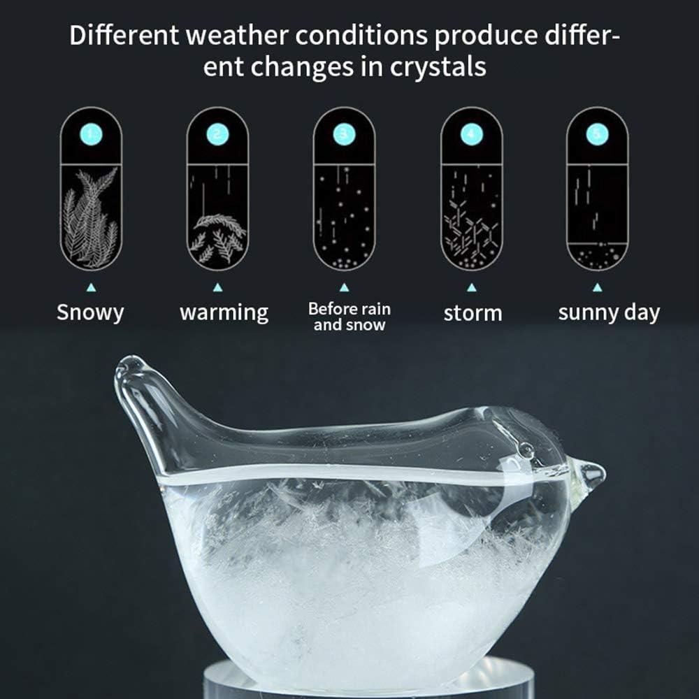SUNJULY Weather Predictor Barometer Weather Station for Office Desktop Home Decorative Storm Glass Weather Forecaster