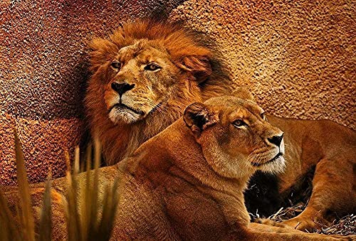 Ettfvl Tigre león Animales Leopardo Animal﹣Diamante 5d5D Diamond Painting CompletoBordado Punto de Cruz Diamante Craft Decoración del hogar﹣40x50cm(Sin Marco)