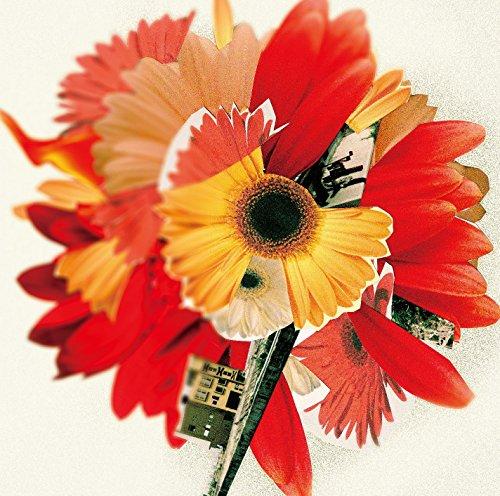 「花は咲く」復興ソングとして込められた歌詞の意味を教えますの画像