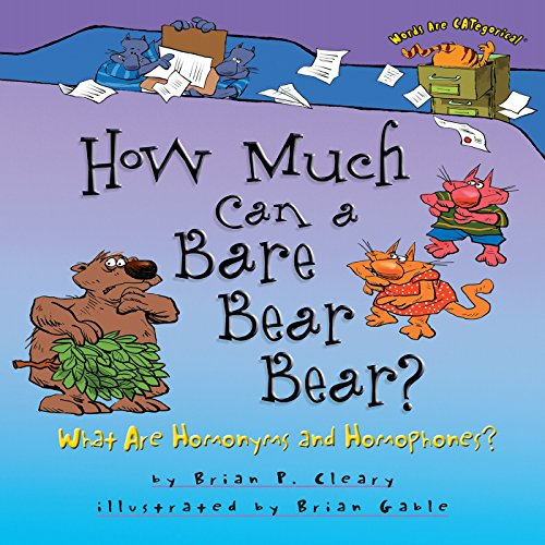 How Much Can a Bare Bear Bear? copertina