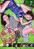麻雀宝湯記 石和の亀篇・伊東の黒豹篇[DVD]