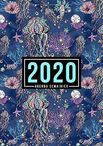 Agenda semainier 2020: Du 1er janvier 2020 au 31 décembre 2020 : aperçu hebdomadaire et mensuel, journal, planificateur & organiseur : Animaux de l'océan 021-3 (French Edition)