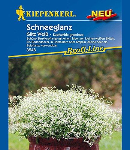 Schneeglanz Glitz Weiß, 1 Portion