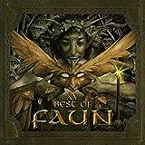 Songtexte von Faun - XV – Best Of