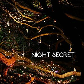 Night Secret