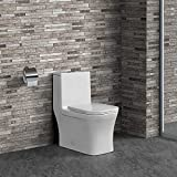 Swiss Madison Well Made Forever SM-1T106 Concorde One Piece Toilet, Glossy White