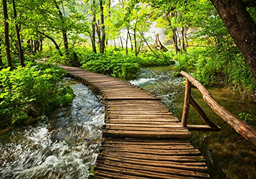wandmotiv24 Fototapete Fluss mit Holz Brücke XS 150 x 105cm - 3 Teile Fototapeten, Wandbild, Motivtapeten, Vlies-Tapeten Wald, Bäume, Sträucher M5766