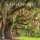 South Carolina Wild & Scenic 2020 12 x 12 Inch Monthly Square Wall Calendar, USA United States of America Southeast State Nature (English, French and Spanish Edition)