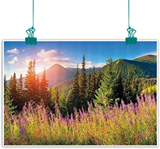 Apartment Decor Abstract Painting Fall Season Landscape Picture in Mountains with Flowers Alpine Trees Forest at Sunrise Natural Art 47