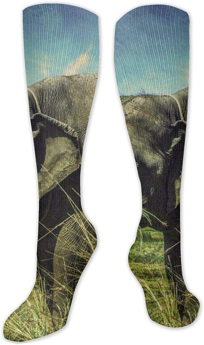 Gray Elephant Grass Walk Knee High Socks Leg Warmer Dresses Long Boot Stockings For Womens Cosplay Daily Wear
