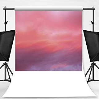 Coral Theme Backdrop Cartoon Backdrops Photography Backdrop,Beautiful Vanilla Sky with Clouds Tenderness Dreamy Unreal Soft Heavenly,10x20ft