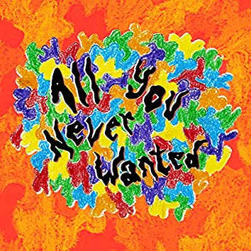 All You Never Wanted