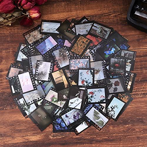 Lychii Scrapbooking Stickers, 240 Stück PVC Blumen und Pflanzen Muster Dekorationsaufkleber, Vintage Design Kleber Aufkleber für Craft Scrapbook Album, Kalender Planer