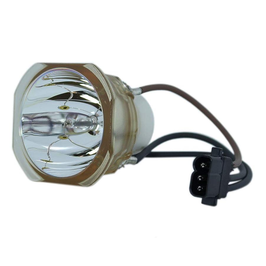 アノイトレーダー吹きさらしSpArc 交換用ランプ 囲い/電球付き LG AJ-LBX3A用 Economy
