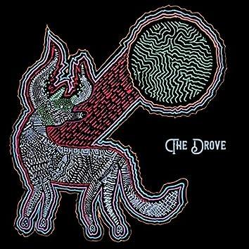 The Drove