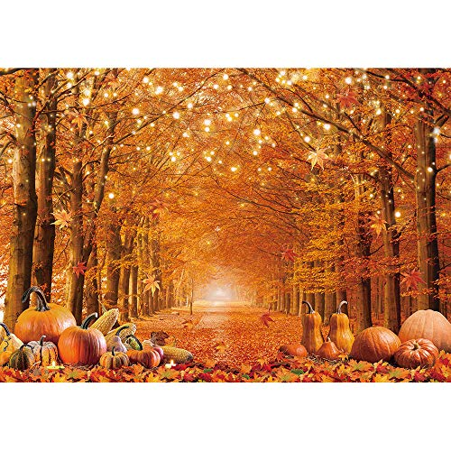 Allenjoy 8x6ft Durable/Soft Fabric Fall Photography Backdrop Autumn Maple Forest Leaves Pumpkin Background Thanksgiving Party Supplies Farm Harvest Event Banner Becoration Photo Booth Props