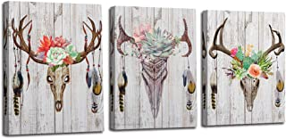 Arjun Canvas Antler Wall Art Deer Head Skull Pictures Indian Feather Modern Stylish, Simple Life Succulent Green Plants Painting Colorful Flowers Artwork 3 Panels Wooden Framed for Bedroom Kitchen Din