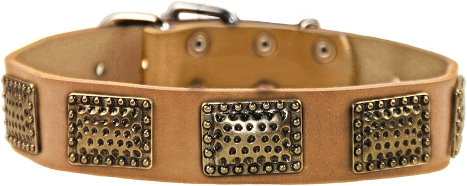 Dean and Tyler  DRUM ROLL  Dog Collar With Nickel Hardware  Tan  Size 41cm by 4cm Width  Fits Neck Size 36cmes to 46cmes.