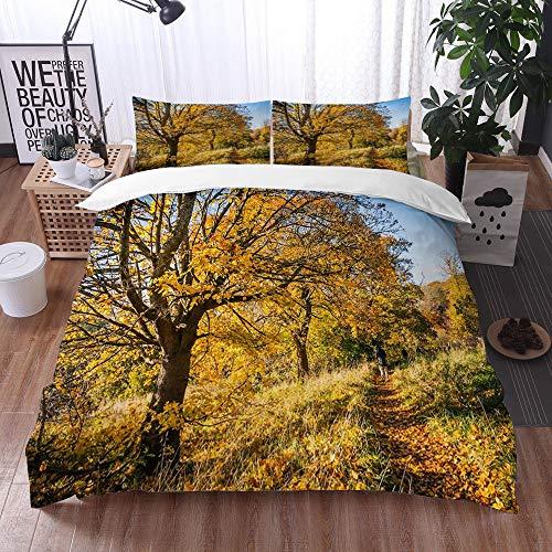 Bedding Juego de Funda de Edredón -Hermoso parque en Motherwell en Escocia con hojas de naranja, árboles, senderos y ramas de á/Microfibra Funda de Nórdico (Cama 200 x 200 cm + Almohada 50X80 cm)