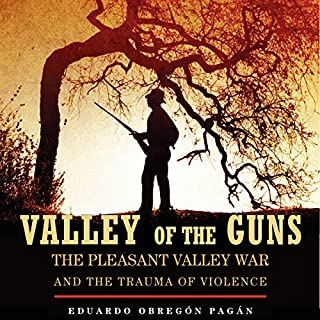 Valley of the Guns audiobook cover art