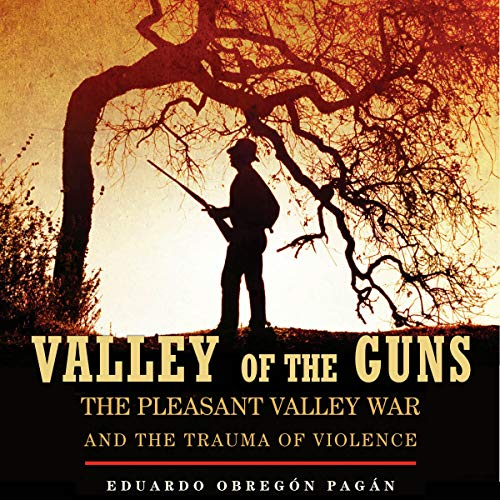 Valley of the Guns Audiobook By Eduardo Obregón Pagán cover art