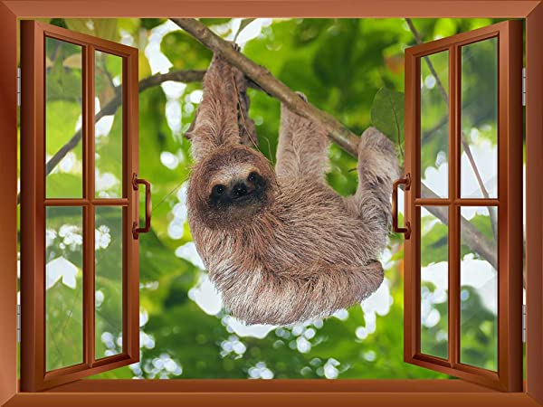 Wall26 A Sloth Hanging On A Tree Branch Outside Of An Open Window Removable Wall Sticker Wall Mural 24 X32