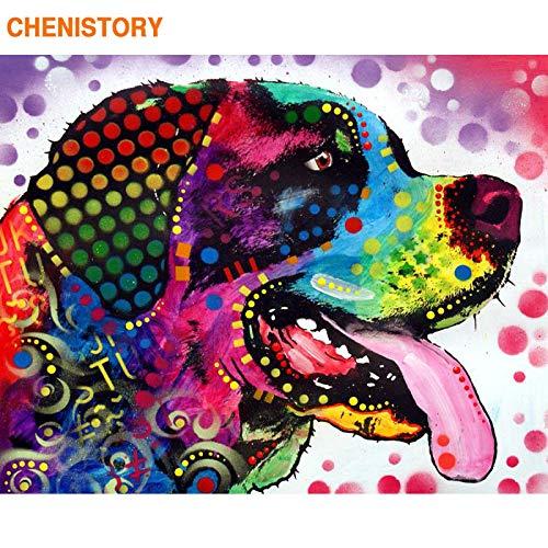 MBYWQ Schilderen op nummer, dieren, DIY, kleurrijke acrylverf op zeildoek, uniek geschenk voor interieur, grafische kaart (zonder lijst)