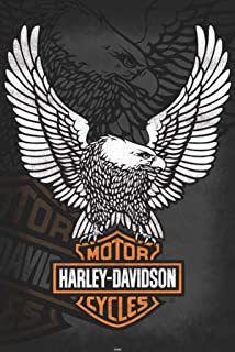 Posters: Harley Davidson Poster - Emblem, Eagle (36 x 24 inches)