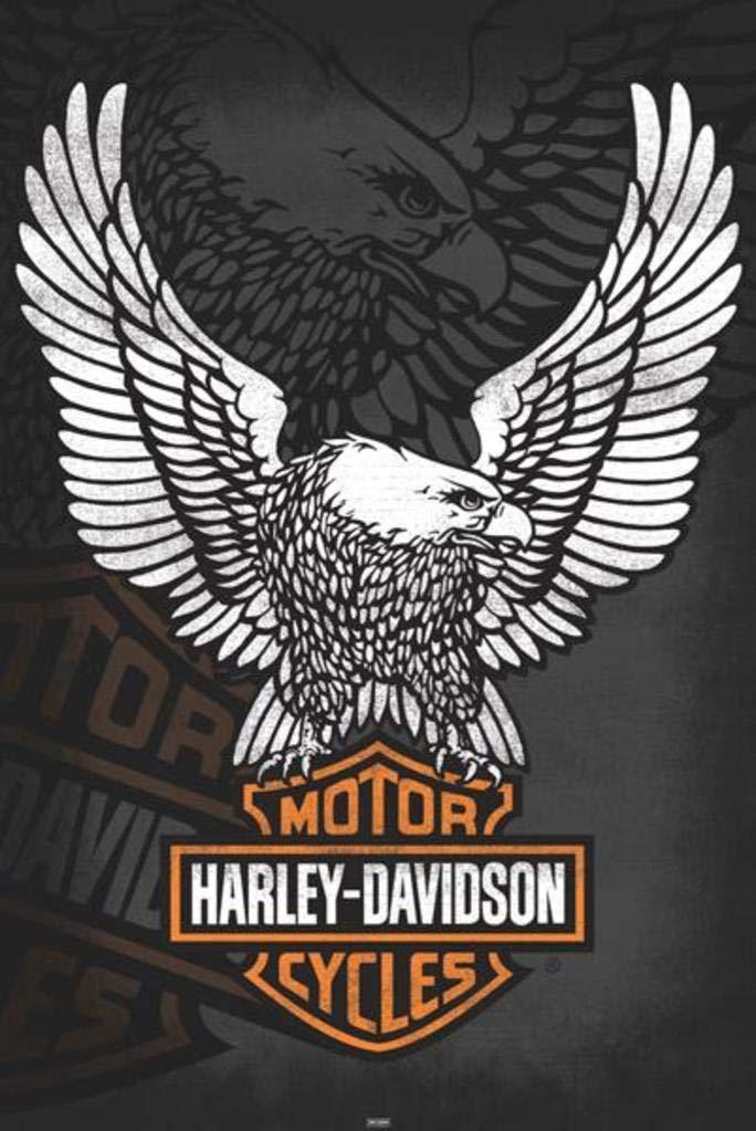 Harley Davidson Logo Wall Decorations from m.media-amazon.com