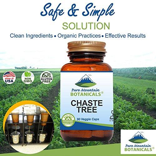Chaste Tree Berry Capsules - 90 Kosher Vegan Caps with 400mg Organic Chasteberry