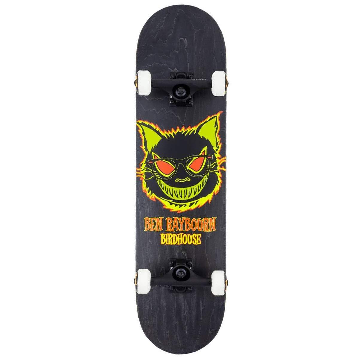Birdhouse Complete Skateboard Raybourn Black