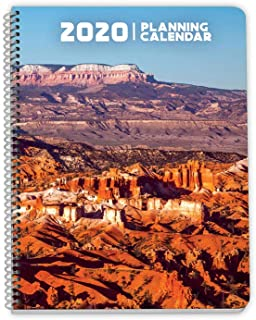 Dated 2020 Week at a Glance Annual Planner Thrive - Large (8.5 x 11 Inches) - Daily Lines, Monthly Space, Yearly Calendars, Organizer, Life Planner
