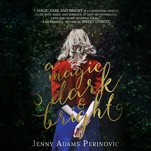 A Magic Dark and Bright audiobook cover art
