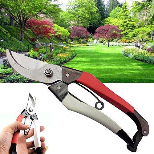 Sécateur outils ménagers de coupe Ciseaux de jardinage en acier carbone accessoire de jardin d'élagage Ciseaux arbres Décoration
