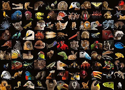 meaosy Puzzle Animale Esotico Fotografico 500 Pezzi Puzzle da Adulti, Multicolore