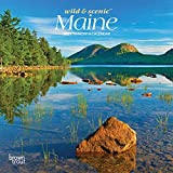 Maine Wild & Scenic 2021 7 x 7 Inch Monthly Mini Wall Calendar, USA United States of America Northeast State Nature