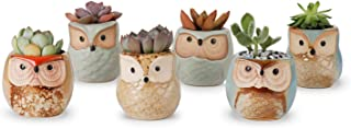 Greenaholics Succulent Plant Pots - 2 Inch Owl Ceramic Planter with Glaze for Little Succulent or Seedling, Succulent Gift Idea, Plain, Set of 6