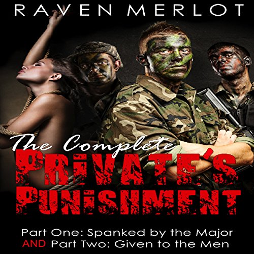 The Complete Private's Punishment audiobook cover art