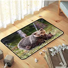 Outdoor Door mat, Fade and Wear Resistant Rug Catches Dirt Dust Snow & Mud, Wilderness Mother Bear and Her Cubs - W15 x L23