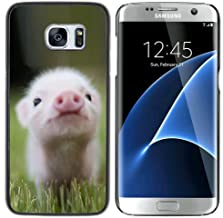 STPlus Cute Pig Animal Hard Cover Case for Samsung Galaxy S7 Edge