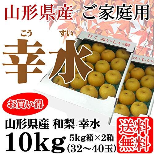 山形県産 和梨 幸水 10kg (5kg×2箱) 32〜40玉 [幸水10キロ]【ご家庭用】