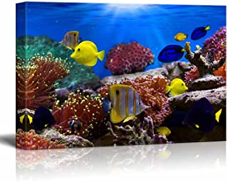 """Canvas Wall Art - Coral Reef and Tropical Fish Under The Ocean 