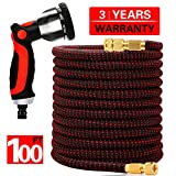 WORTH GARDEN 100ft Expandable Garden Hose, Durable Flexible Water Hose with 10 Function