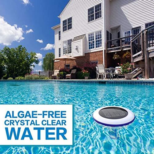 ZWXIN Solar Pool Ionize, dispositivo purificador de piscina de cobre y plata Lon purificador de agua purificador para estanques, piscina limpia, spa, bañeras de hidromasaje