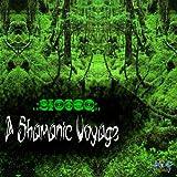 The Shamanic Voyage