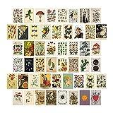 AOOF 50 Stück ästhetische Wandcollage-Kit,schickes