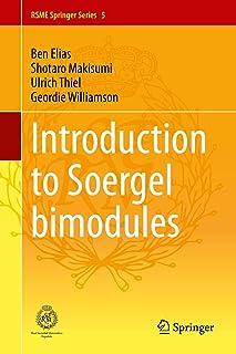 Introduction to Soergel Bimodules