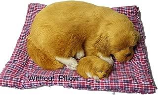 Blueafflatus Dogs Tabby Cats Pet Golden Retriever Plush Kids Sounds Soft Toys (Golden)