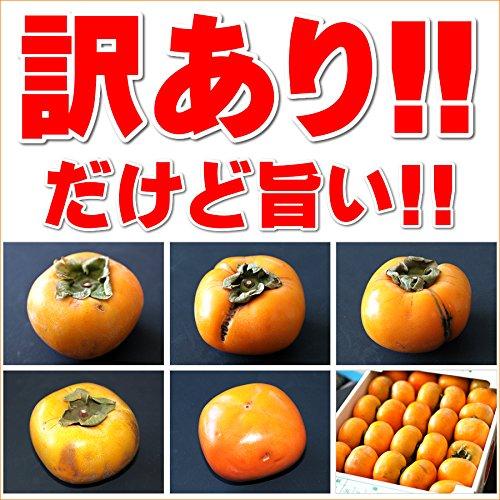山形県産ご家庭用庄内柿(訳あり/5kg)