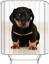 Epinki Polyester Shower Curtain Decorative Bathroom Accessories Black Brown Rottweiler Dog Bathroom Curtain with 12 Hooks ...
